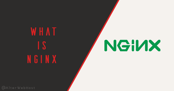 What is NGINX Server
